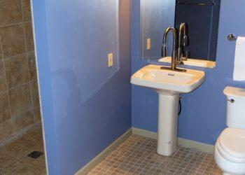ada-bathroll-in-shower